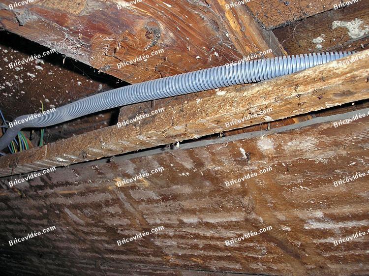 Question menuiserie r novation plafond sous chevrons combles perdus for Plafond combles perdus